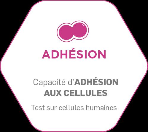 Adhésion : une large gamme de tests in vitro
