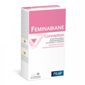 Feminabiane Conception